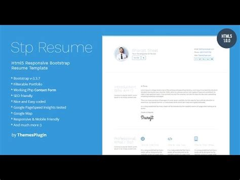 Professional resume portfolio template